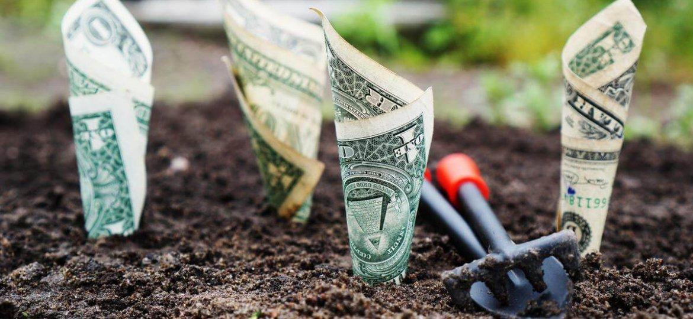 growing-money-garden-personal-loan